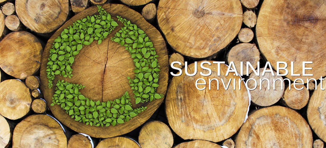 Sustainable Environment Waste To Energy Systemswaste To