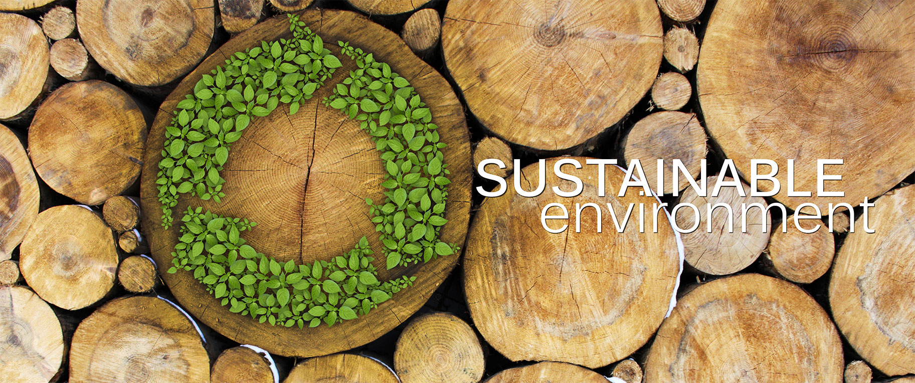 SUSTAINABLE-ENVIRONMENT