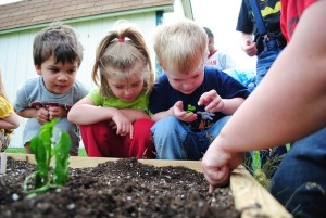 Sustainable Childrens Garden